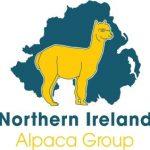 Breeding Alpacas
